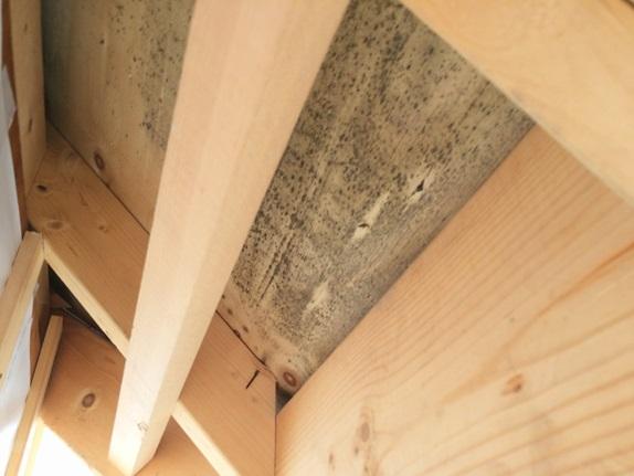 雨漏り被害,雨漏り修繕工事,室内雨漏り,ベランダ雨漏り修繕工事,漏水,防水,シーリング,サイワ塗装工業,埼玉外壁塗装,さいたま市外壁塗装,治らない雨漏り