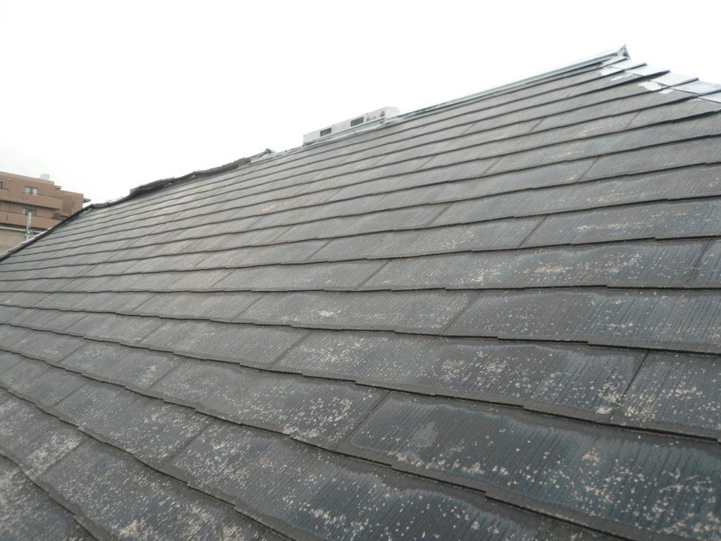 屋根塗装 サイワ塗装工業 さいたま市西区